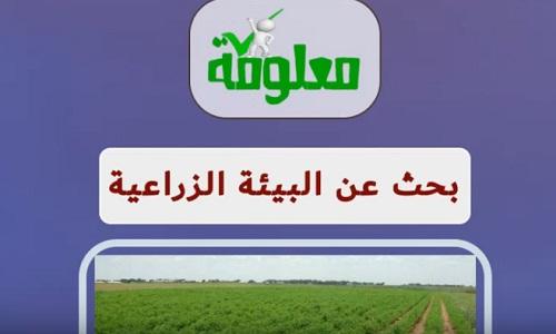بحث عن البيئة الزراعية doc